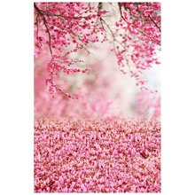 Photography backgrounds photo studio photographic background for children wedding Pink