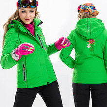 2017 New Lady Clothing, Waterproof Winter Warm Air with Thick Cotton-padded Clothes Mountaineering Wear Clothes When Charging