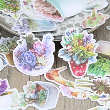 25pcs Colorful Succulent Plant Scrapbooking Stickers Beautiful Plants Decorative Sticker DIY Craft Diary Deco(China)