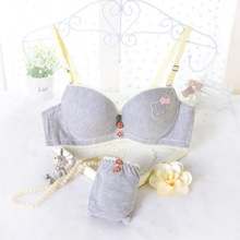 Woman Brand Bra & Brief Sets Females Underwear Set Lingerie Gray Women Sexy Push Up Bra and Panties Cat Printed Womens Bra Set