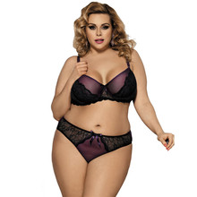 Buy Sexy Transparent Sexy Bra Panty Sets Plus Size Unlined Underwire Lace Woman Underwear Sexy Set Women Lingerie R80273