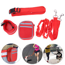 Nylon Pet Cat Running Dog Leash Padded Waist With Strip Elastic Leash + Zipper Bag +Reflective Waist Belt Bottle Holder Bag