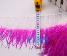 Real Ostrich Feather Feather Trim Feather Fringe/Ribbon For Fashion Dress/Skit Fuschia White Feather 10 meters Wholesale