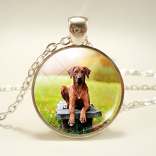 Dog Photo Necklace Glass Cabohcon Pendant Necklace Alter Art Pendants Long Necklaces Animal Lover Gifts Women Jewellery