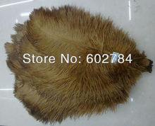 Free Shipping 200pcs/lot brown ostrich drab feather ostrich pluma 30-35CM 12-14inch for wedding decoration(China)