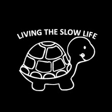 HotMeiNi 13cm SLOW LIFE VINYL DECAL STICKER Funny JDM DSM ILLEST DIESEL TRUCK CAR SALT(China)