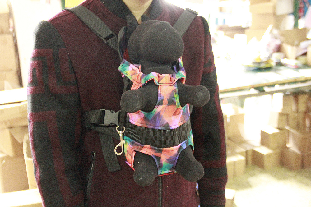 Pet backpack (1)