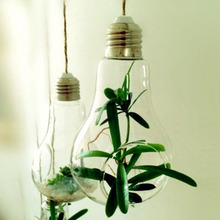 5pcs Glass Bulb Lamp Shape Flower Water Plant Hanging Vase Container Home Indoor Office Wedding Decor(Without rope)