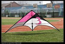 pipa stunt rainbow trilobite volant sport delta kites high quality pink fabrics flying dual line kite cheap triangle kiting
