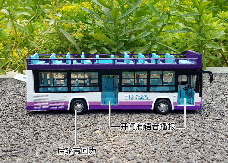132 Double-decker Sightseeing Bus (15)