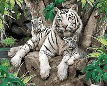 Hot selling diy oil Painting White Tiger mother and child Modern Diy Digital Frameless By Numbers Wall Art Unique For Home Decor