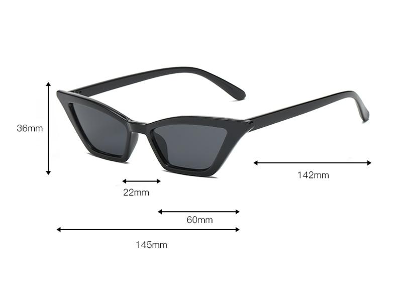cat eye sunglasses 0366 details (2)