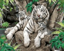 Hot selling Oil Painting White Tiger mother and child Modern Diy Digital Frameless By Numbers Wall Art Unique For Home Decor