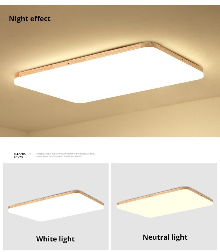 led ceiling light (12)