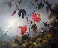 Passion Flowers with Hummingbirds, 1893 by Martin Johnson Heade Decorative Painting Flower Oil Painting for Kitchen High Quality