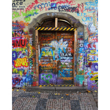 Customize vinyl cloth print graffito wall door photo studio backgrounds for photocall portrait photography backdrops S-2228