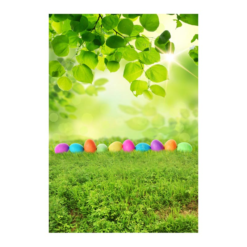 Thin fabric computer Printed photography background Easter colorful eggs photo backdrop for Studio 5X7ft GE-070<br><br>Aliexpress