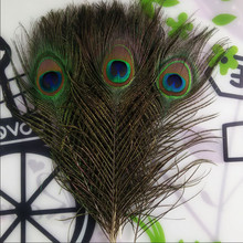 Top quality peacock feathers 10 Pcs/lot, length 25-32 CM beautiful natural peacock feather Diy jewelry Decorative Deco fittings