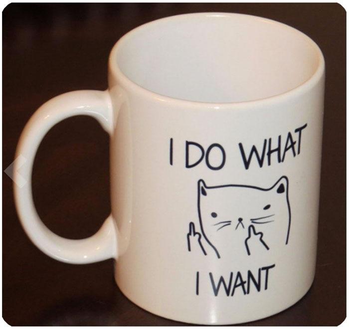 Funny Cat Mug 6
