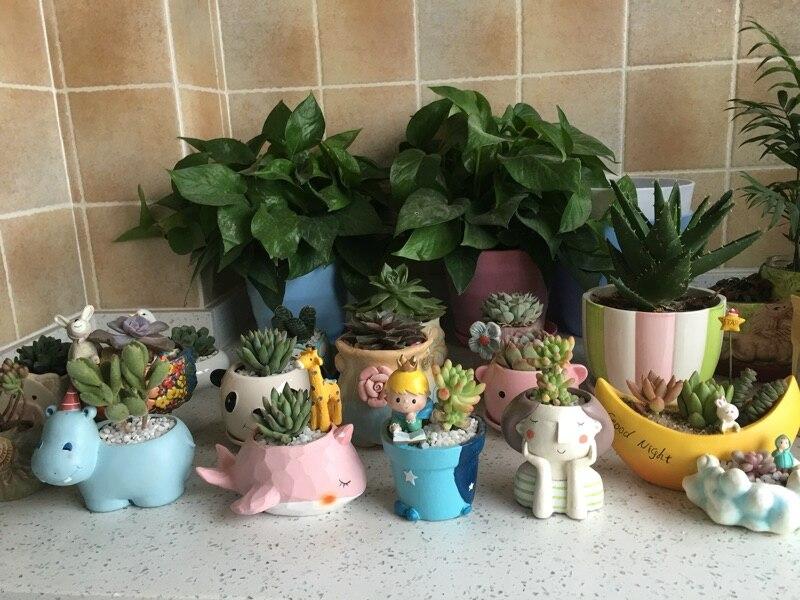 1pcs Small Flowerpot Creat Design Home Garden Mini Bonsai Cactus Planter Pots Succulent Plant Pot Wedding Birthday Gift Ideas recommend