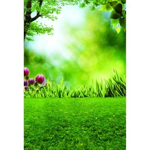 12ft Vinyl print sunny spring photography backdrops for model photo studio portrait backgrounds photographic props F-1481