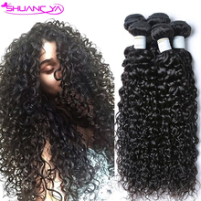 Brazilian Water Wave Brazilian Virgin Hair Ocean Wave 4pcs Lot Mink Hair Brazillian Curly Wet and Wavy Human Hair Extensions