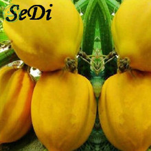 Bonsai 1 original pack 5 pcs Peach Melon Pumpkin Seeds vegetable seeds free shipping Home Garden decorations b82(China)