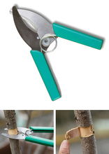 Ring Barking Cutter Scissor Girdling Knife Garden fruit Tree grape cherry prunning tool shrub orchard
