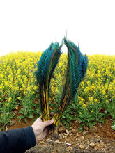 new! Wholesale beautiful yellow peacock feather sword 20 units symmetrical size 35-40 cm 14-16 inch peacock eye decoration