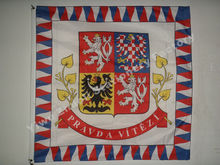 Czech Republic President Flag 120X120cm (4x4FT) 120g 100D Polyester Double Stitched High Quality Free Shipping(China)