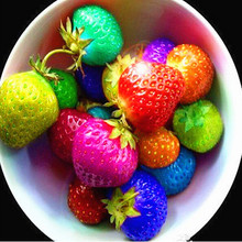 100 seeds/bag color rain bow strawberry seeds fruit Multi-color strawberries seeds flower seed garden pots & planters