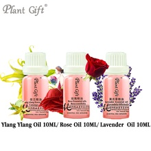 100% Pure Plant Essential Oils Ylang Ylang / Rose / Lavender Oil 10ml Indonesia Imports Whitening Glossy Black Hair Oily Skin(China)