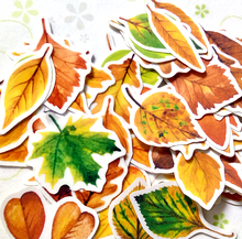 37pcs Creative Cute self-made autumn yellow leaves / plants scrapbooking stickers /decorative sticker /DIY craft photo albums