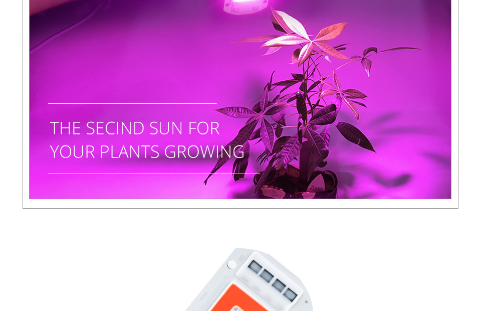 grow led cob chip (2)
