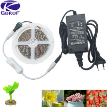 GBKOF 5050 LED Grow Lights DC 12V waterproof Growing LED Strip Plant Growth Light Set with Power Adapter and Switch 1M 2M 3M 5M(China)