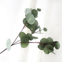 63 CM artificial eucalyptus leaf Green plant branches silk flower arranging accessories money leaves branch(China)