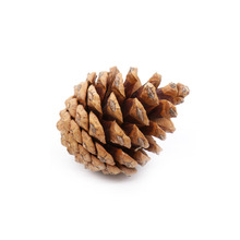 10pcs diy Christmas Tree Pine Cones Wood Pinecone Hanging Ball Holiday New Year Party Ornament For Home Office Festival Supplies