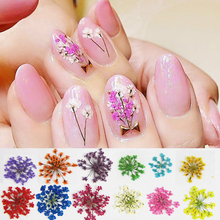 12 Colors Nail Dried Flowers Nail Art Decoration DIY Tips with boxed Small Flowers nails tools   free shipping