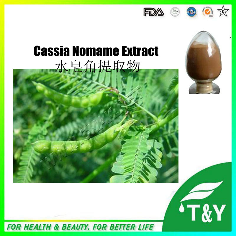 100% weight loss Cassia Nomame Flavanol  Nomame Semaherb extract 500g/lot<br>