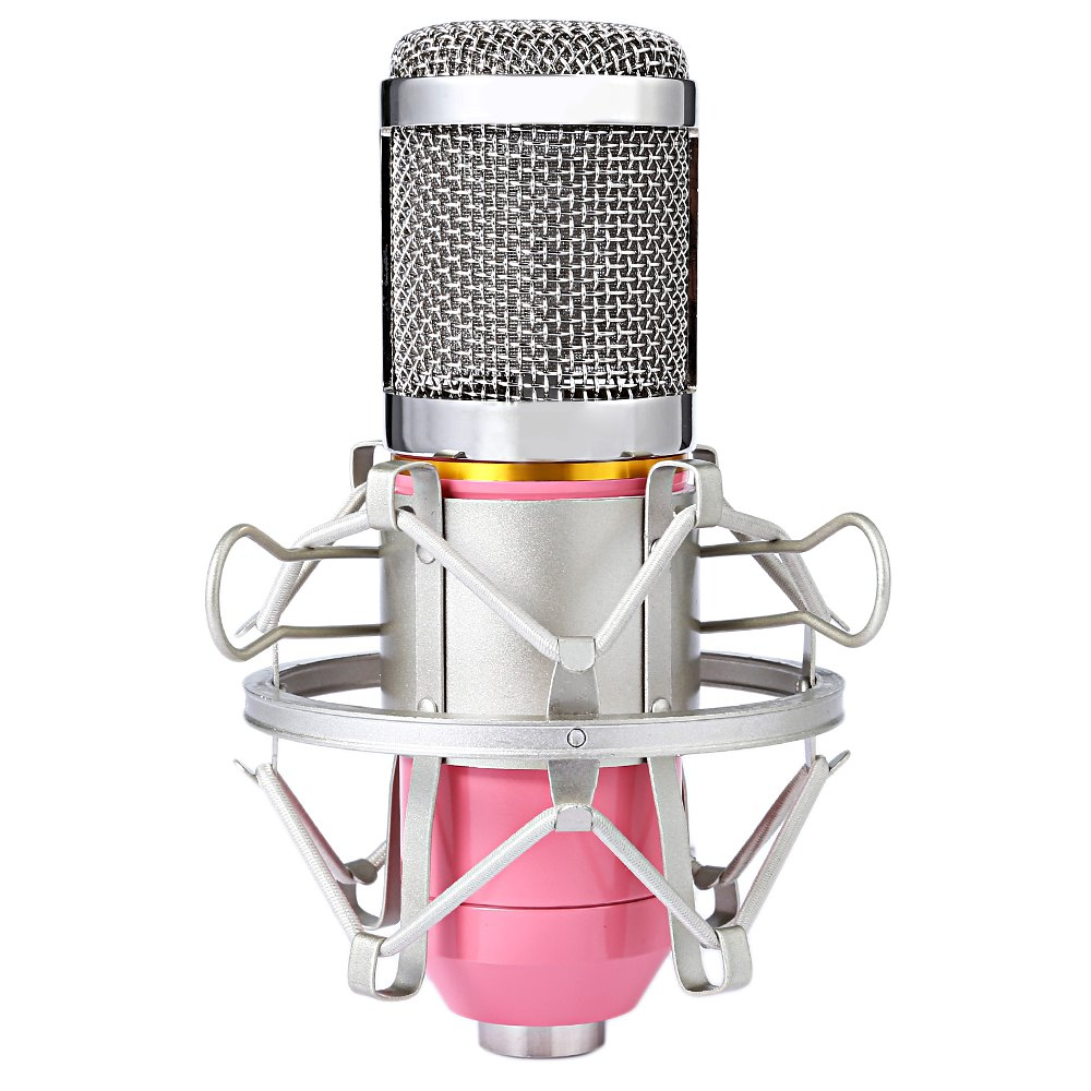 Professional Studio Sound Condenser Microphone 3.5...