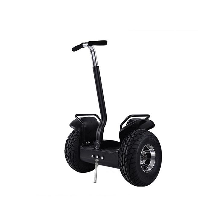 self balance electric chariot (3)