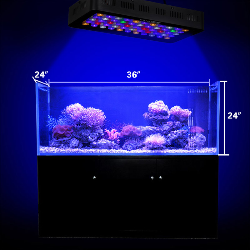 Aquarium Hood Fish Tank LED Light (Blue Red White) Lighting Color Changing Controlled Dimmable Used for Freshwater and Saltwater (16)