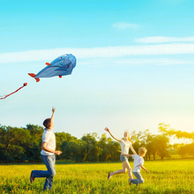 3D Huge Light Weight Soft Parafoil Kite Giant Cute Dolphin Kite For Outdoor Beach Playing Dolphins Kites US#V