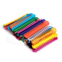 40pcs/set Dental Orthodontic Materials Ligature Ties Colorful Rubber Band Elastic Dentist Products Dropship(China)