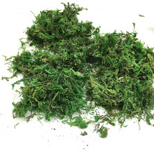 50g/bag Keep dry real silk Flower green moss wedding plants vase l turf  accessories for flowerpot decoration
