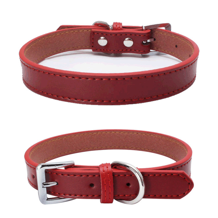 Dog Collars (6)