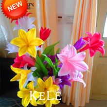 Sale!Color lily seeds cheap perfume lily seeds, mixing different varieties - 100 pcs/Bag,#A35P5E