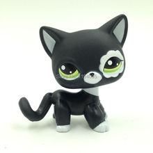 Cute LPS figure kids Collection toy Short Hair cat EUROPEAN #2249 Children's gifts
