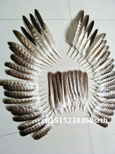 Sale a set  high quality scare natural eagle feathers 20-33cm/8-14inch diy stage performance Jewelry crafts decoration collect