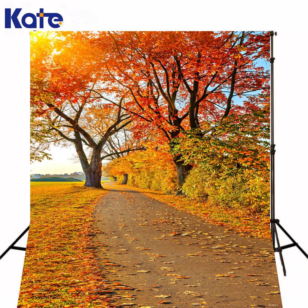 200CM*150CM Autumn Maple Trail Sunshine Backdrops Photography Mini Backgrounds Studio Camera Fotografica for Children<br>